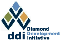 DDI Logo